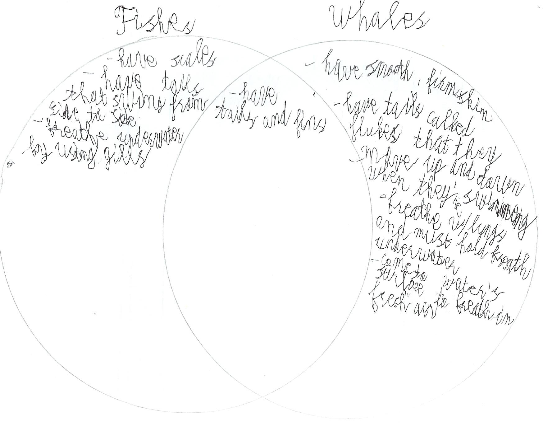 Science Venn Diagram Comparing Animals 5
