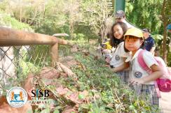 SIngapore International School Field Trip to Chiang Mai Zoo
