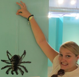 Closest I am willing to get to a spider!