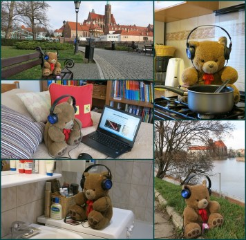 Meliana and bear in Wroclaw ( in Poland), which is this year European Capital of Culture