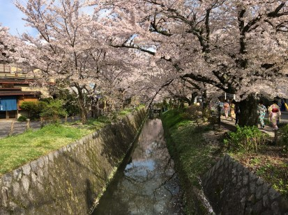 Philosopher's Walk, Kyoto
