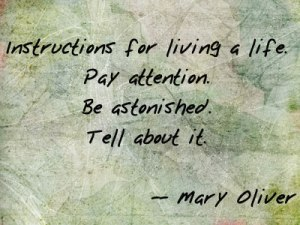 MaryOliver_LIFE