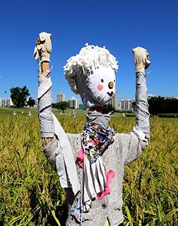 the-scarecrow-Lie Poem Lesson Plan 2