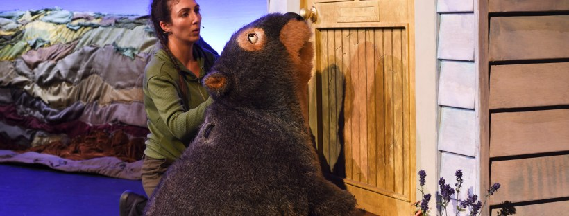 Diary of a Wombat play