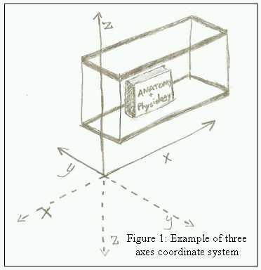 08.06.03: Seeing in 3D: Interpreting Two Dimensional