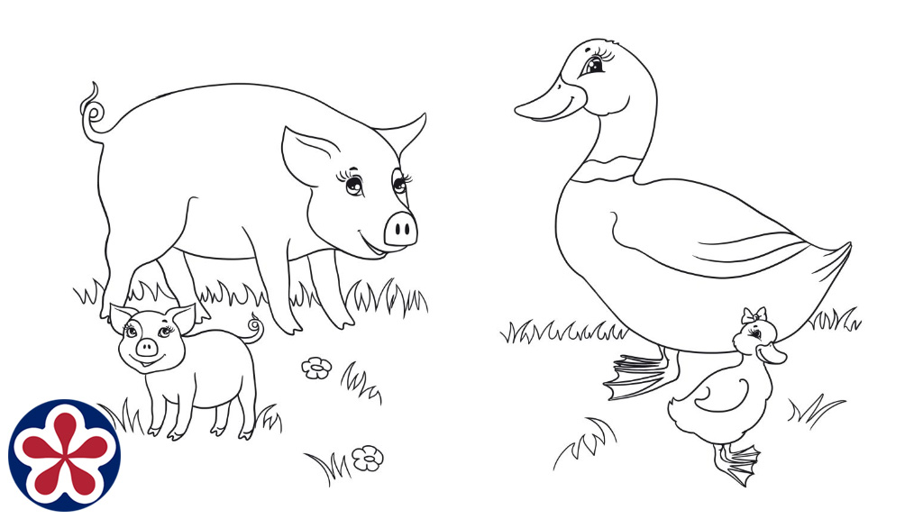 Farm Animals and Their Babies Coloring Pages. TeachersMag.com