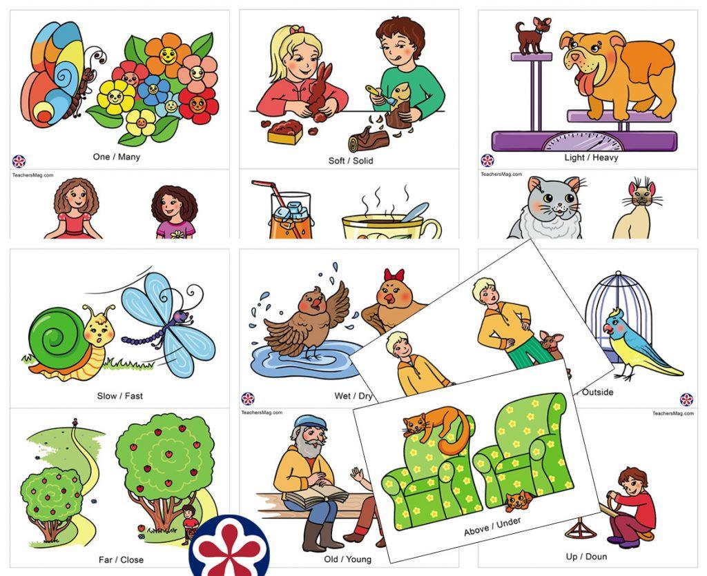 Antonym Focused Flashcards For Preschoolers