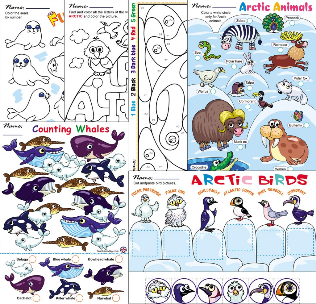 Arctic Animals Worksheets For Preschoolers Teachersmag