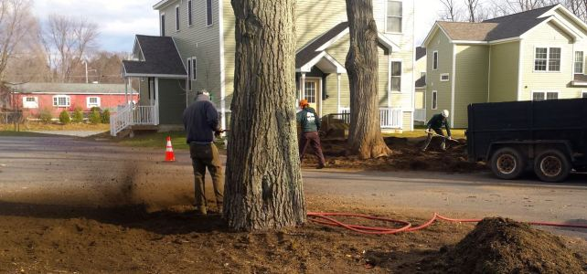 Remediating construction damage
