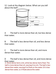 Matter and Energy Test (5TH)2