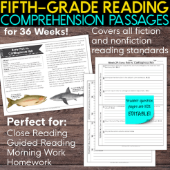 5th grade reading comprehension