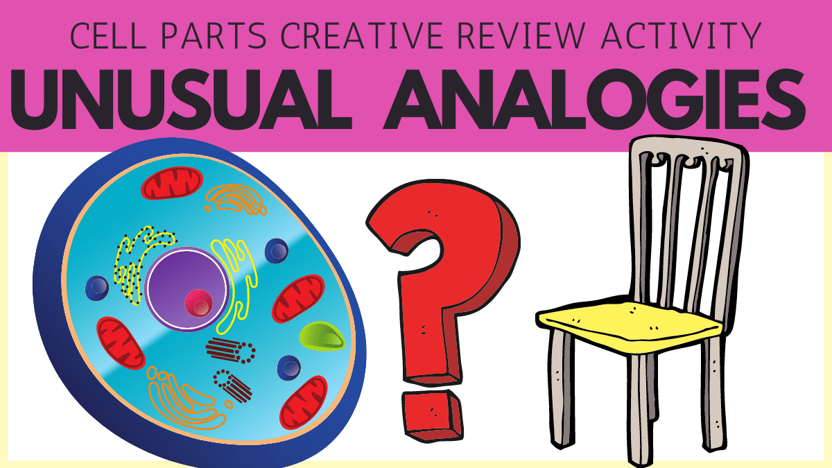 Review the Cell with Unusual Analogies!