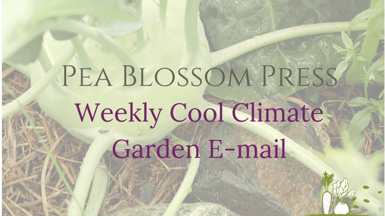 Pea Blossom Press Weekly Cool Climate Garden E-mail