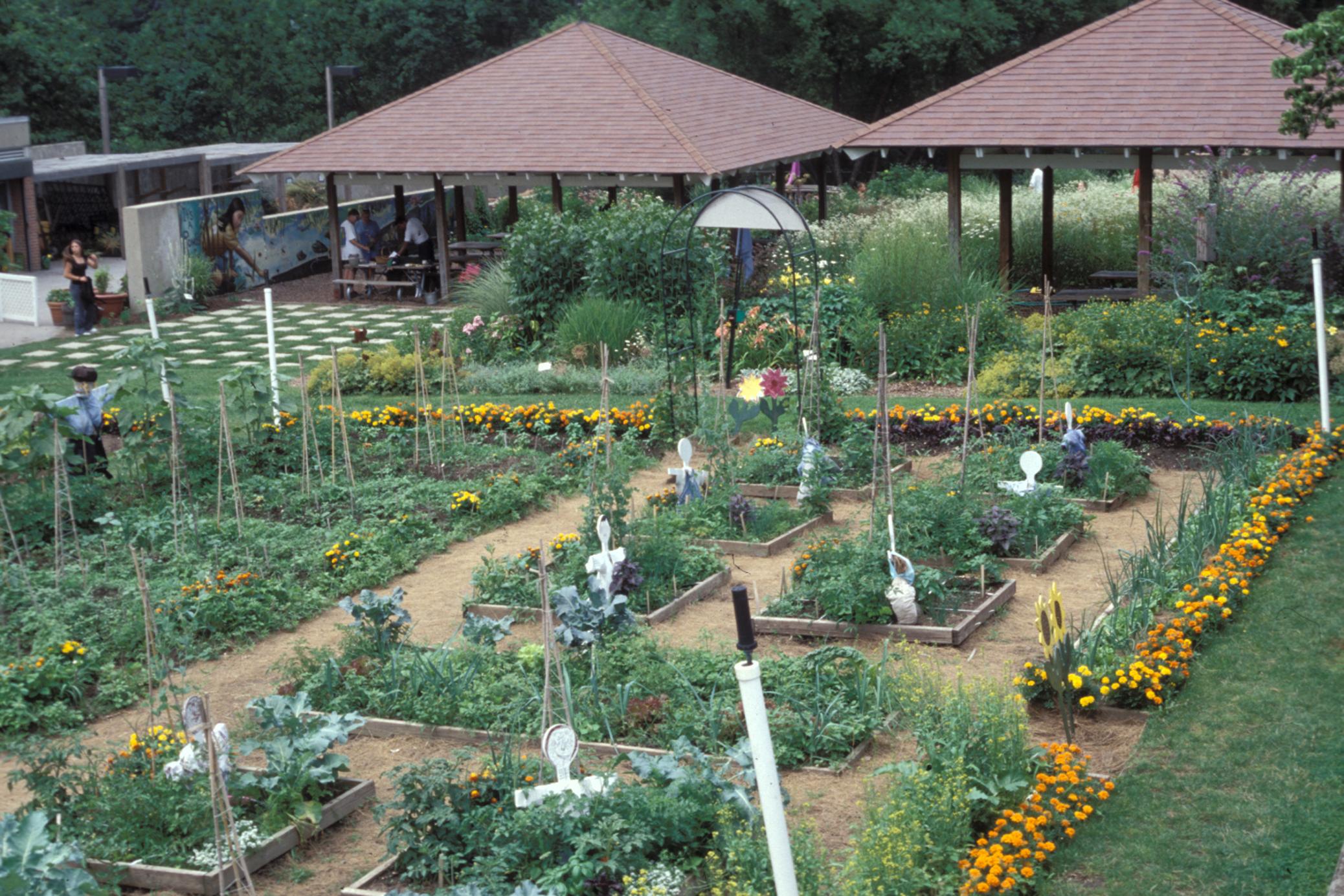 Pin Di Katie Sozansky Su School Garden Pinterest Giardini