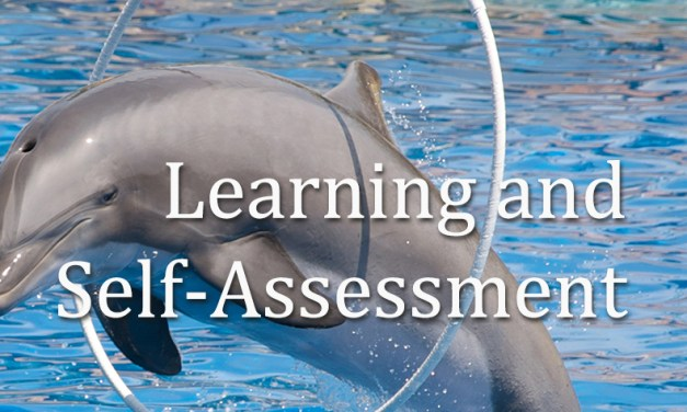 Learning and Self-Assessment