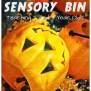 Halloween Sensory Play For Preschoolers Teaching 2 And 3