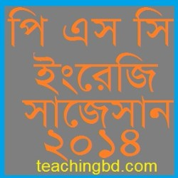 English Suggestion and Question Patterns of PSC Examination 2014