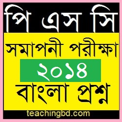 PSC-dpe-Question-of-Bengali-Subjects-2013