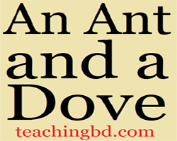 An-Ant-and-a-Dove