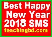 Best Happy New Year 2019 SMS 7
