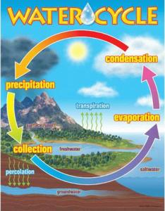 also water cycle learning chart rh teachingdisplays