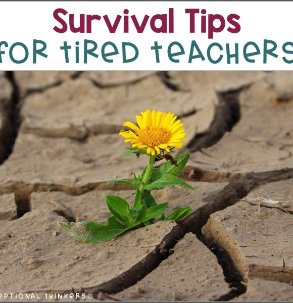 8 Survival Tips for Tired Teachers