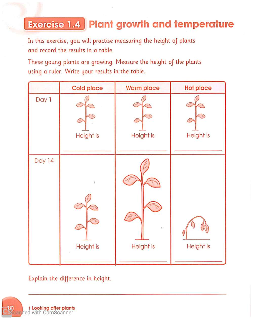 medium resolution of Science worksheets for Grade 3 – Teaching Kids to Read and Write