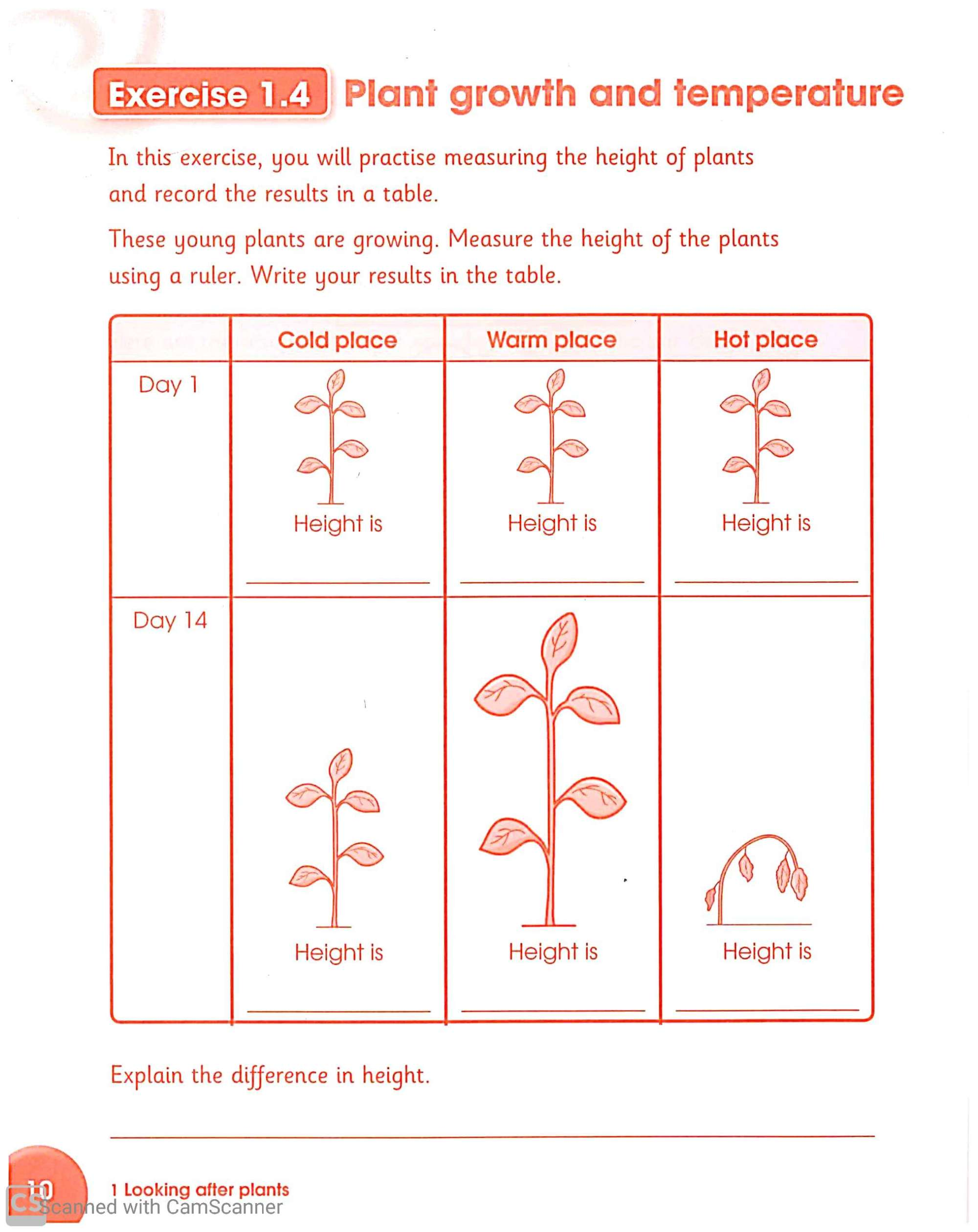 hight resolution of Science worksheets for Grade 3 – Teaching Kids to Read and Write