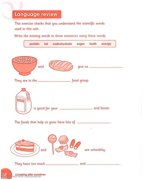 small resolution of Science worksheets for Grade 3 – Teaching Kids to Read and Write