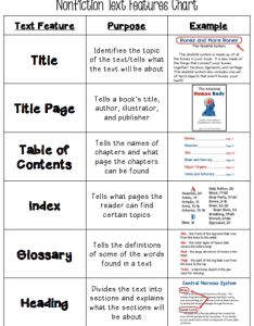 Free text features chart also teaching made practical rh teachingmadepractical