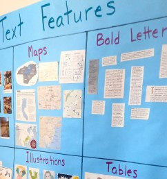 Text Features: Engaging Activities - Teaching Made Practical [ 2393 x 3456 Pixel ]