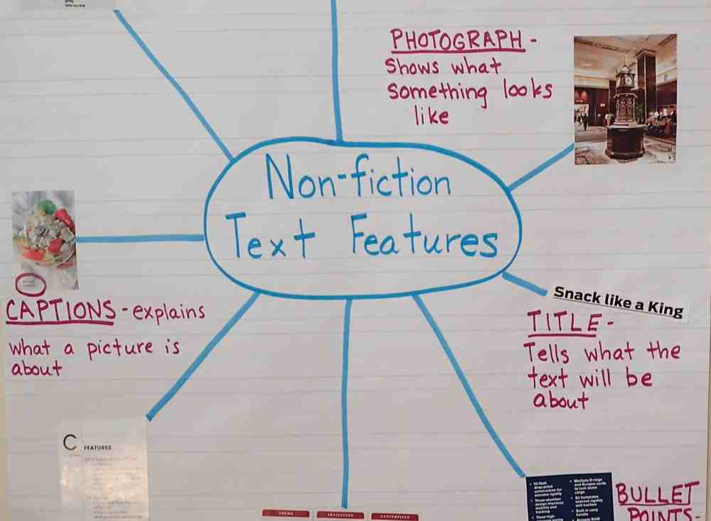 medium resolution of Text Features: Engaging Activities - Teaching Made Practical