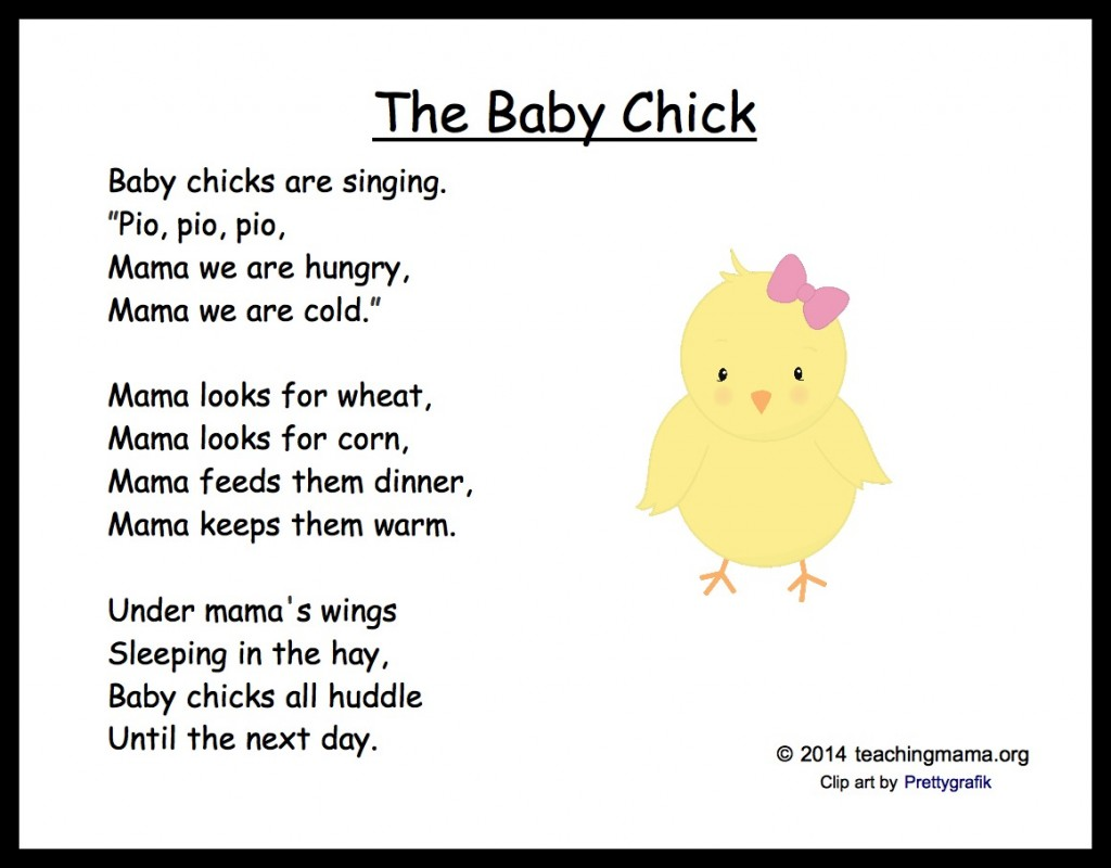 5 Baby Chick Songs And Chants