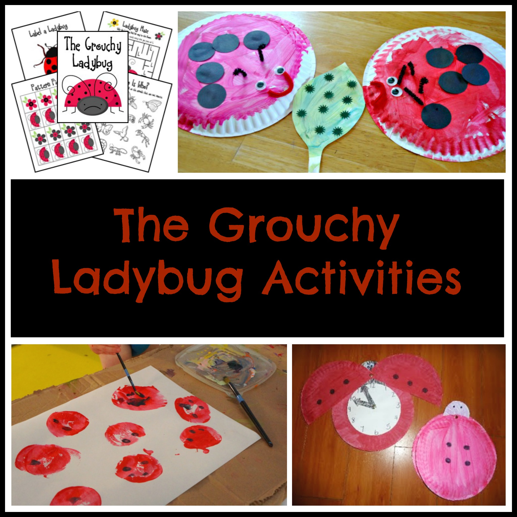 The Grouchy Ladybug Activities
