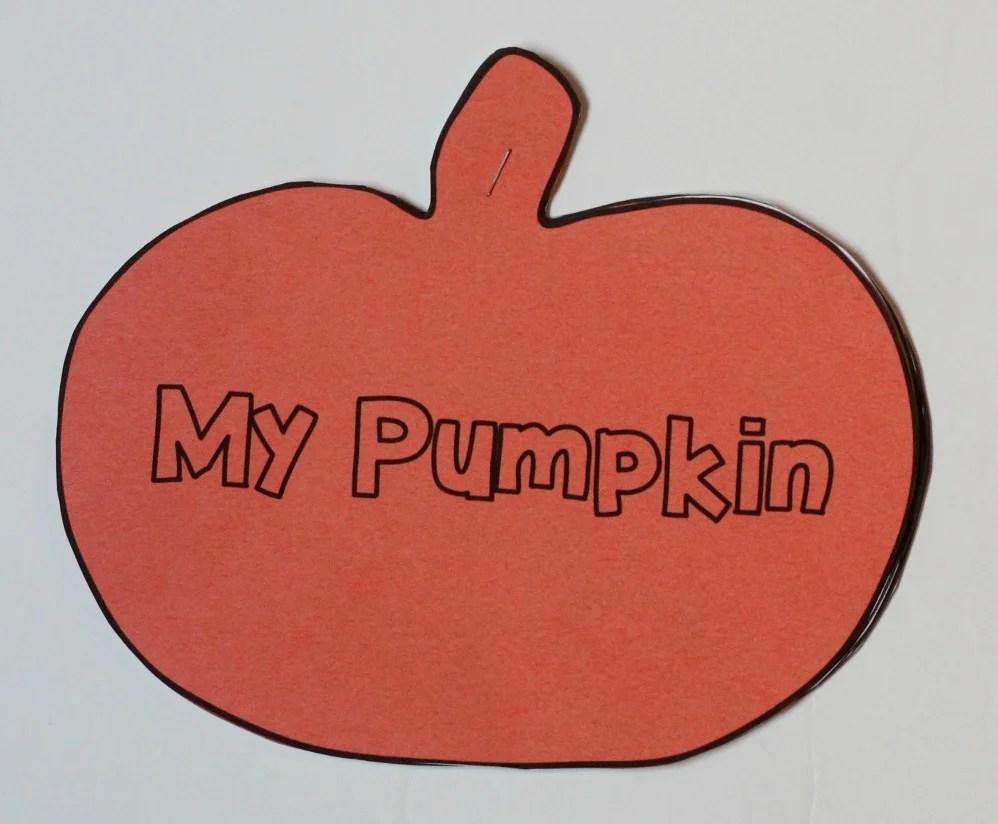 hight resolution of my pumpkin book2
