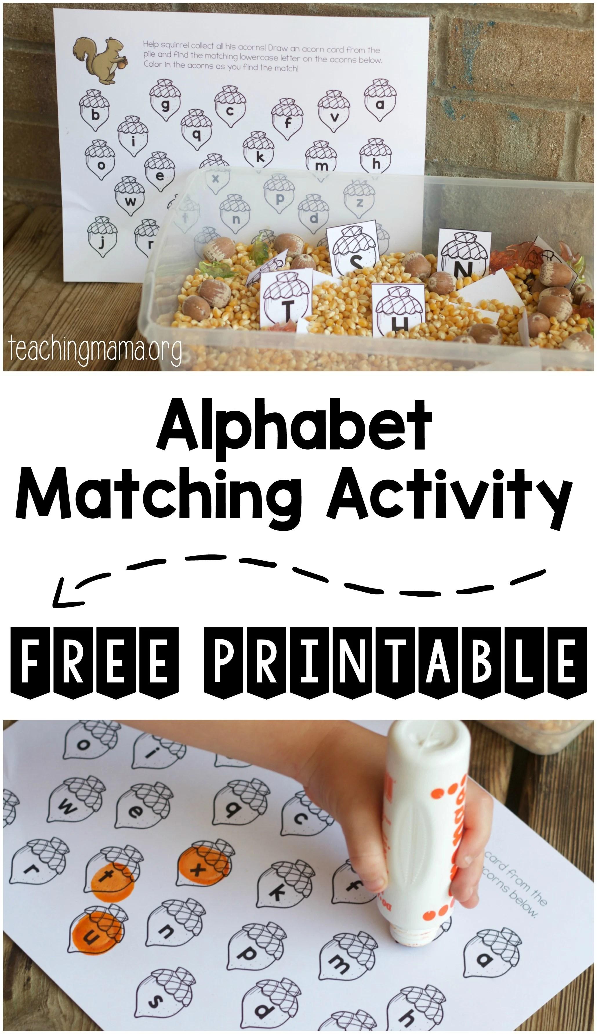 Squirrel Alphabet Matching Activity