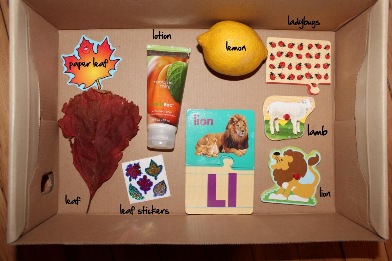 Letter L Alphabet Box