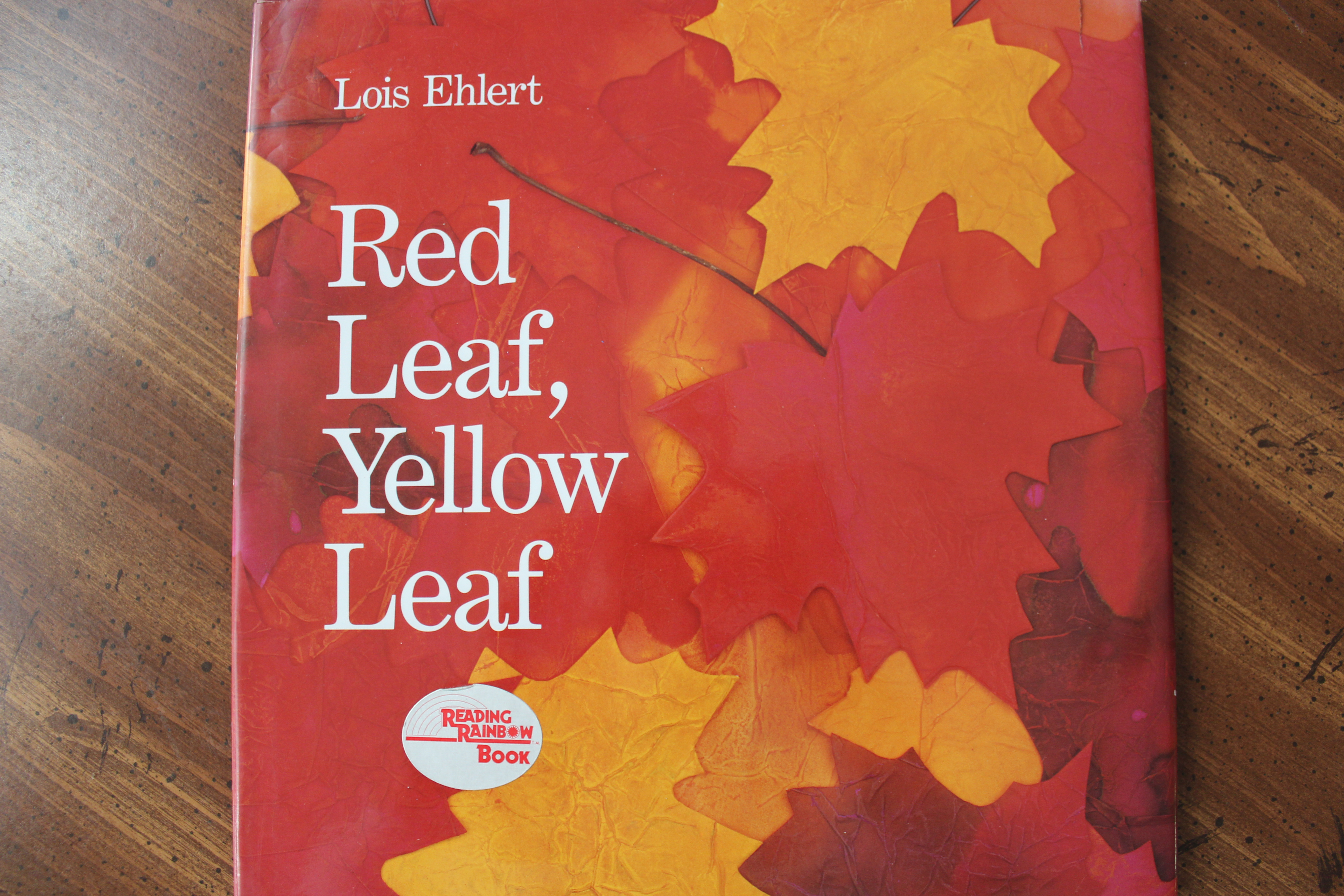 Red Leaf Yellow Leaf Activity