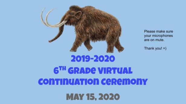 2020 Virtual Continuation