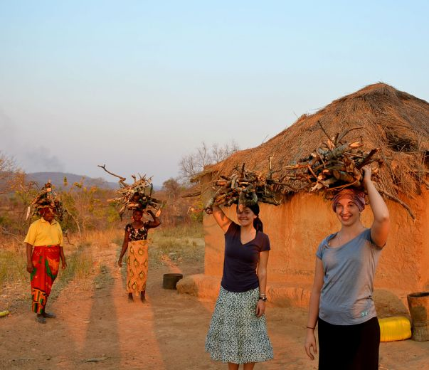 Women carrying firewood on their heads.