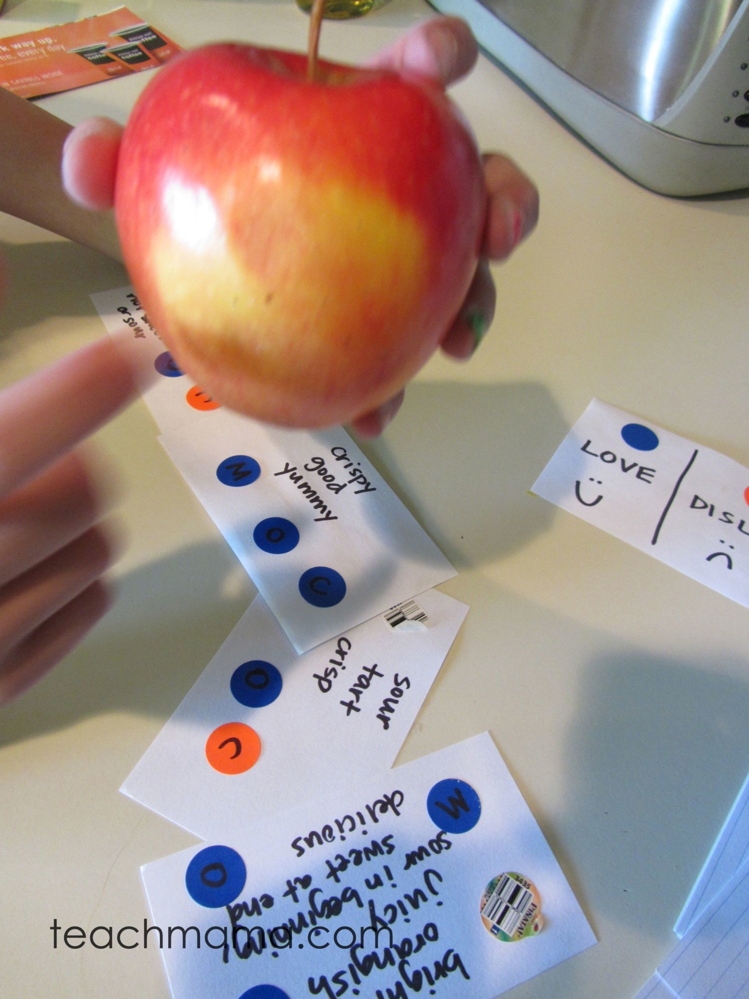 red apple taste test   science at home   teachmama.com
