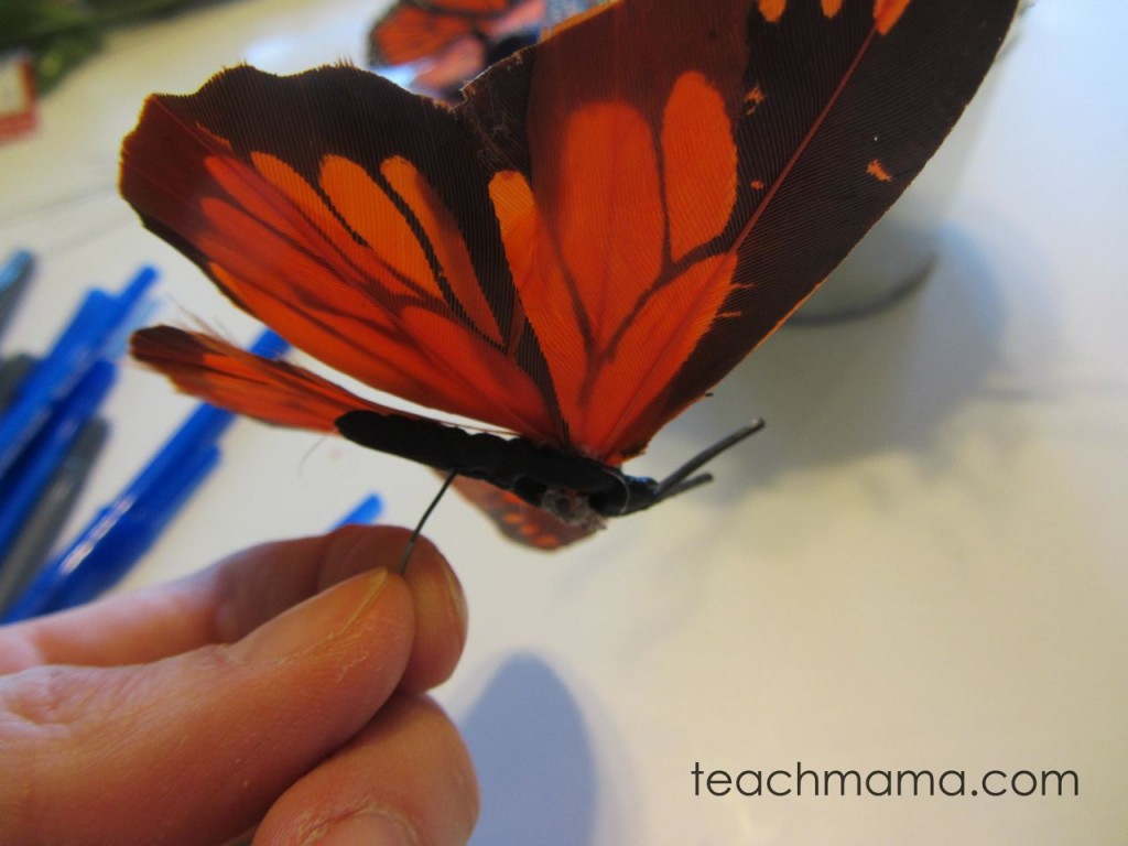 butterfly in child's hand
