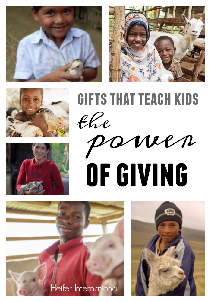 gifts that teach kids the power of giving: animal gifts from heifer international teachmama.com