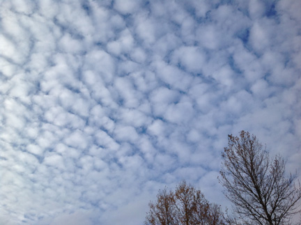 This Is A Cumulus Cloud A Cumulus Cloud Is Clouds That L