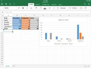 5. Excel