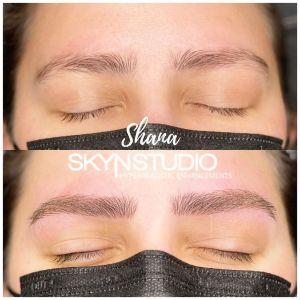 Shana Irish TeachMePMU Ink Society Fundamental Brow Training