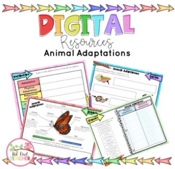 An image for an animal adaptations digital resource activity