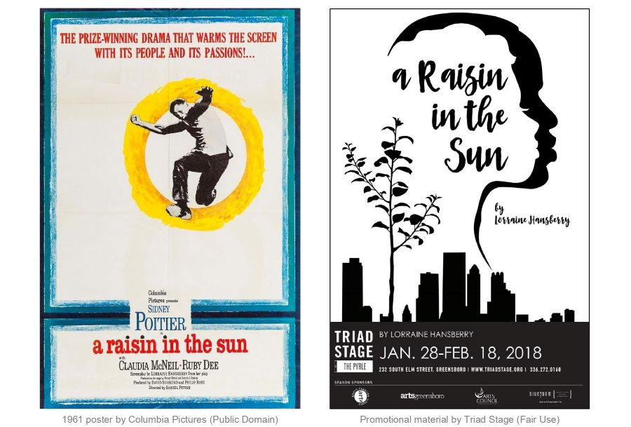 A Raisin in the Sun Project examples