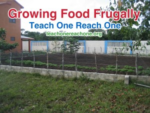 Growing Food Frugally – Teach One Reach One
