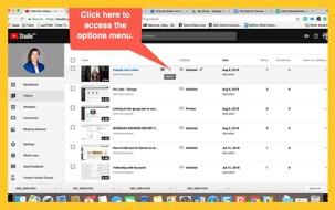 Screenshot of options menu in YouTube